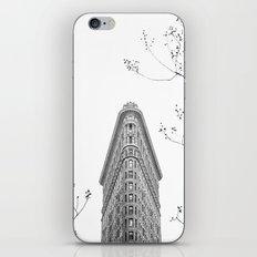 Flatiron Building NYC iPhone & iPod Skin