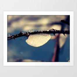 A little winter hibernation Art Print