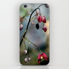 Only for you iPhone & iPod Skin