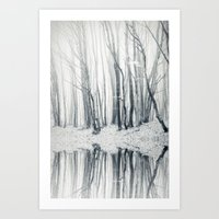 trees and fog Art Print