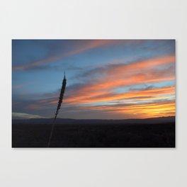 Sunrise at Big Bend III Canvas Print