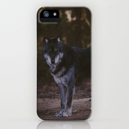 Nadi iPhone Case