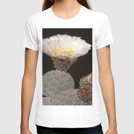 CACTUS4 T-shirt