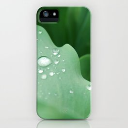 I Dream of Spring iPhone Case
