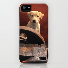 Junkyard stray iPhone Case