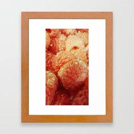 Raspberries Framed Art Print