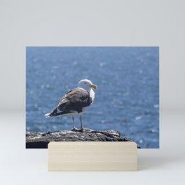 Seagull overlooking the ocean Mini Art Print