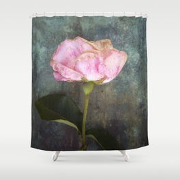Wilted Rose III Shower Curtain