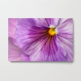 Purple Pansy Flower Close-up #decor #society6 #buyart Metal Print
