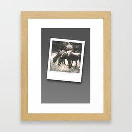 Polaroid Ponies Framed Art Print