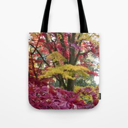 Acer Colours Tote Bag