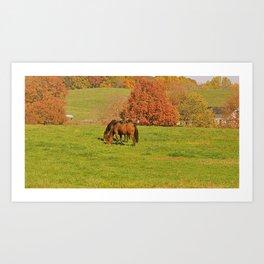 Horse Pasture Art Print