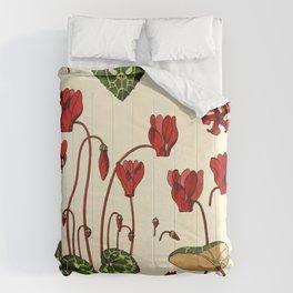 French botanical flower plate - E. Hervegh - Cyclamen Comforters