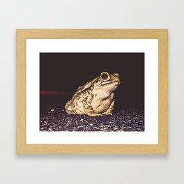 Neighborhood Frog Framed Art Print
