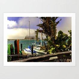 Tropical Morro Bay Art Print