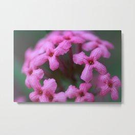 Pink Crosses Metal Print