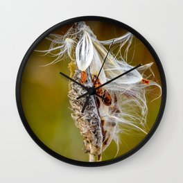 Time to Seed by Teresa Thompson Wall Clock