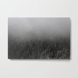 Foggy Treeline Metal Print