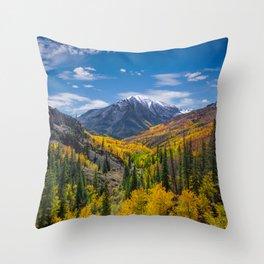 Autumn Views Throw Pillow
