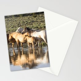 Reflection of a Mustang Family Stationery Cards