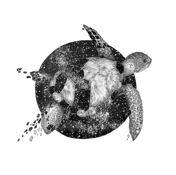 Cosmic Turtle Duvet Cover