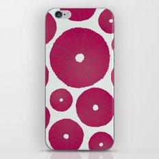 Sea's Design - Urchin Skeleton (Deep Pink) iPhone & iPod Skin
