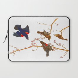 Red winged Starling, or Marsh Blackbird Laptop Sleeve