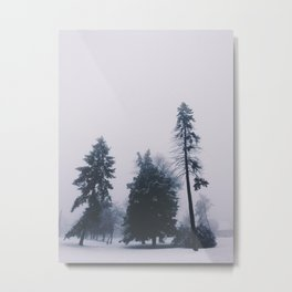Alone in December Metal Print