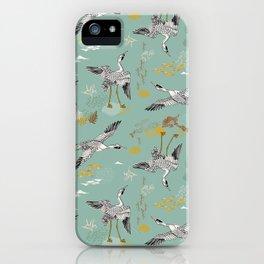 Pájaros menta iPhone Case
