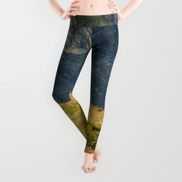 In The Mountains Leggings