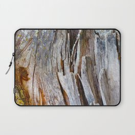 Relic of the Forest Laptop Sleeve