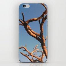 WAFU iPhone & iPod Skin