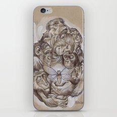 Protecting the Delicate Things iPhone & iPod Skin