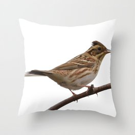 Rustic Bunting Bird Vector Isolated Throw Pillow