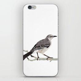 Northern mockingbird - Cenzontle - Mimus polyglottos iPhone Skin