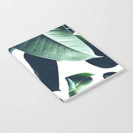 Ficus Elastica #26 #foliage #decor #art #society6 Notebook