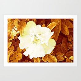 Rambling Rose Art Print