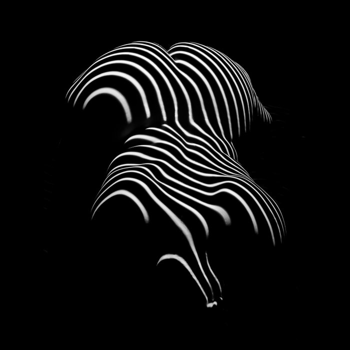 0721-AR Nude Female Naked BBW Geometric Black White Naked Body Abstracted Sensual Sexy Erotic Art Comforters
