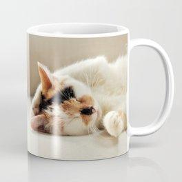Sunday Feline Coffee Mug