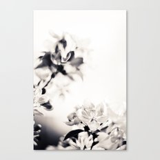Black and White Flowers 2 Canvas Print