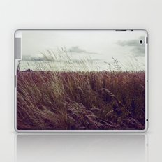 Autumn Field II Laptop & iPad Skin