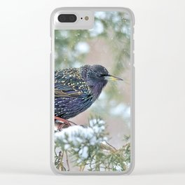 Mardi Gras Starling Clear iPhone Case