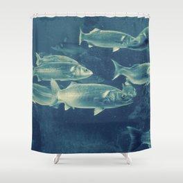 Fish 2 Shower Curtain
