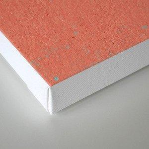 PALM SPRINGS VISITOR CENTRE Canvas Print