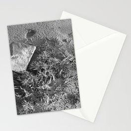 Ray Roberts 01 Stationery Cards