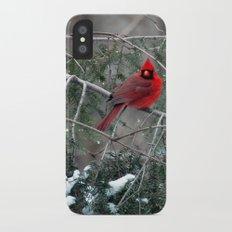 Winter Cardinal Slim Case iPhone X