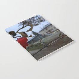 Redberry Notebook