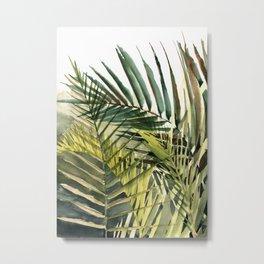 Arecaceae - household jungle #2 Metal Print