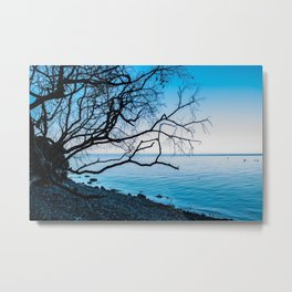 lovely loneliness Metal Print