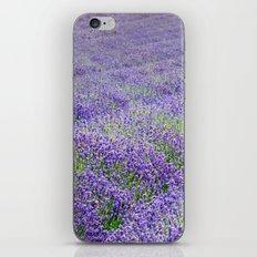 LAVENDER MOOD iPhone & iPod Skin